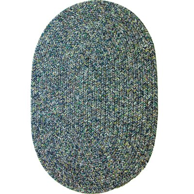Rayadurg Denim Blue Indoor/Outdoor Area Rug Rug Size: Oval 3 x 5