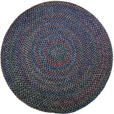 Rehli Blue Indoor/Outdoor Area Rug Rug Size: Round 6
