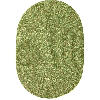 Reoti Green Indoor/Outdoor Area Rug Rug Size: Oval 2' x 3'