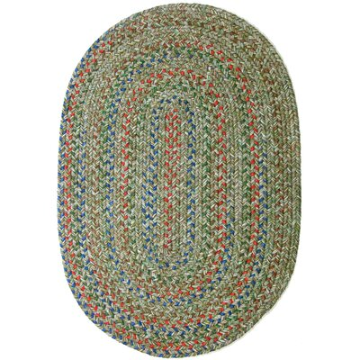 Rosera Green Indoor/Outdoor Area Rug Rug Size: Oval 2 x 4