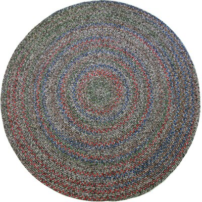 Rudrapur Indoor/Outdoor Area Rug Rug Size: Round 4