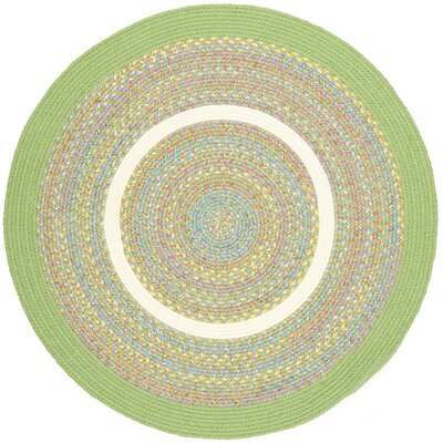 Sagwara Lime Indoor/Outdoor Area Rug Rug Size: Round 4