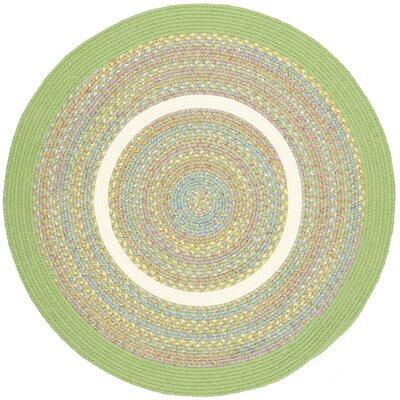 Sagwara Lime Indoor/Outdoor Area Rug Rug Size: Round 4