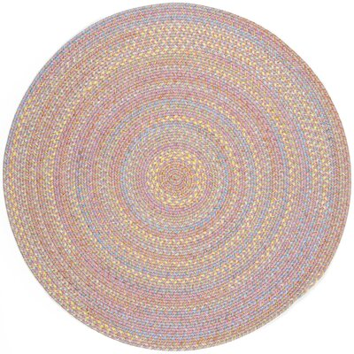 Saidpur Pink Indoor/Outdoor Area Rug Rug Size: Round 4