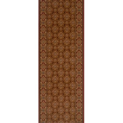 Samdhan Brown Area Rug Rug Size: Runner 27 x 12