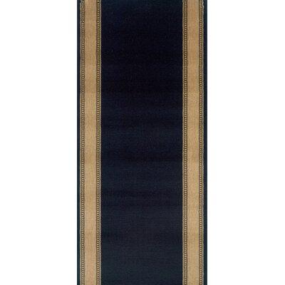Sasvad Black Area Rug Rug Size: Runner 22 x 12
