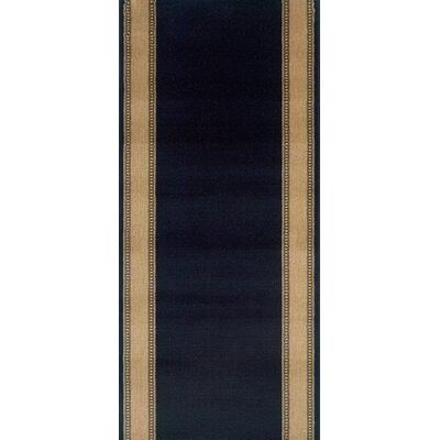Sasvad Black Area Rug Rug Size: Runner 22 x 10