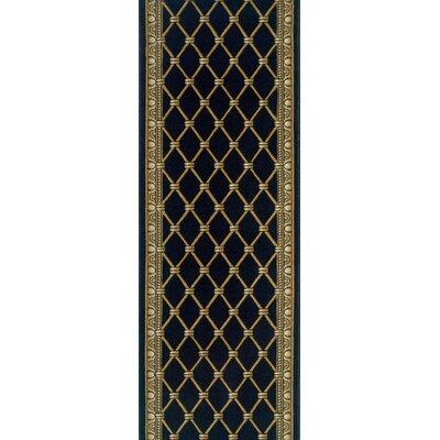 Sattenapalle Black Area Rug Rug Size: Runner 27 x 6