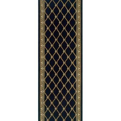 Sattenapalle Black Area Rug Rug Size: Runner 27 x 15