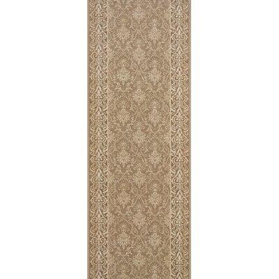 Shahabad Winter Wheat Area Rug Rug Size: Runner 27 x 15