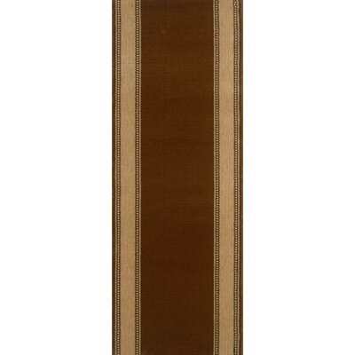 Shenkottai Brown Area Rug Rug Size: Runner 22 x 15