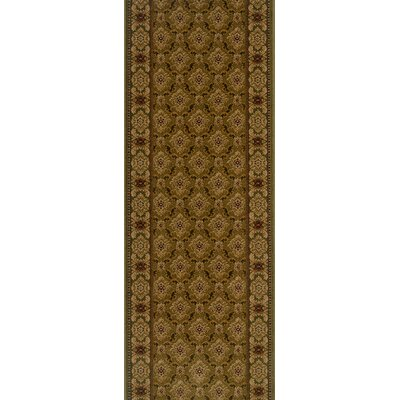 Sheoganj Brown Area Rug Rug Size: Runner 22 x 12