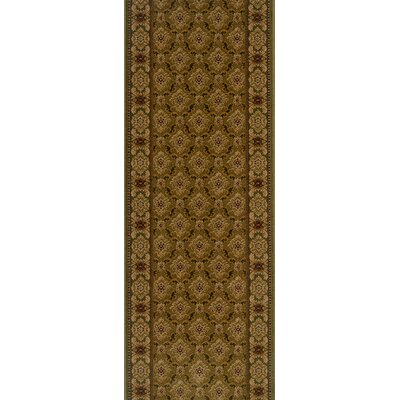 Sheoganj Brown Area Rug Rug Size: Runner 22 x 15