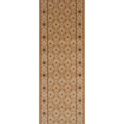 Sheohar Brown Area Rug Rug Size: Runner 22 x 15