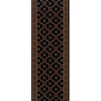 Sherghati Black Area Rug Rug Size: Runner 22 x 12