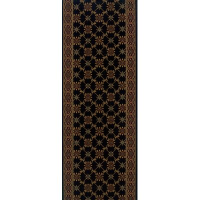 Sherghati Black Area Rug Rug Size: Runner 22 x 15