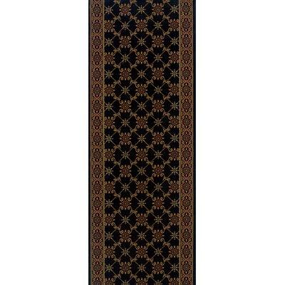 Sherghati Black Area Rug Rug Size: Runner 22 x 6
