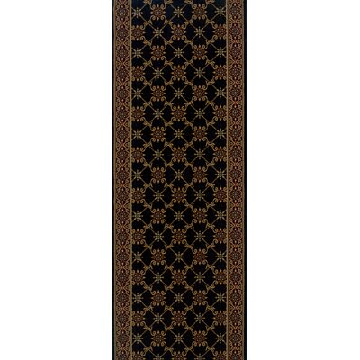 Sherghati Black Area Rug Rug Size: Runner 27 x 15