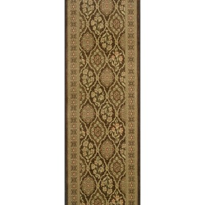 Siddipet Chocolate Area Rug Rug Size: Runner 22 x 15