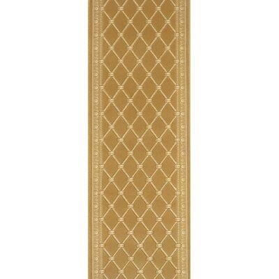 Sihor Gold Area Rug Rug Size: Runner 27 x 15