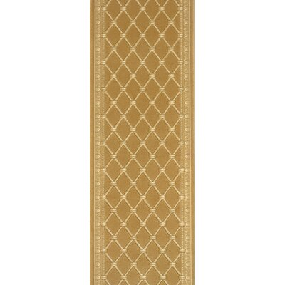 Sihor Gold Area Rug Rug Size: Runner 27 x 12