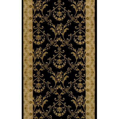 Sikandrabad Black Area Rug Rug Size: Runner 22 x 12