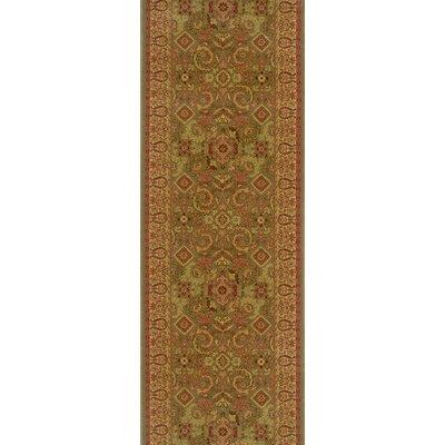 Sohna Lichen Area Rug Rug Size: Runner 27 x 12
