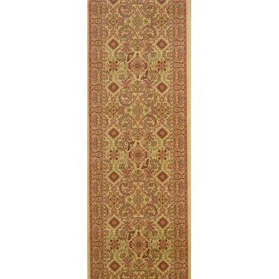 Srikalahasti Chamois Area Rug Rug Size: Runner 27 x 15