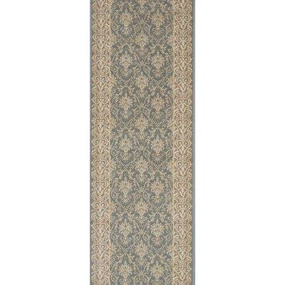 Srivilliputhur Blue Area Rug Rug Size: Runner 22 x 10