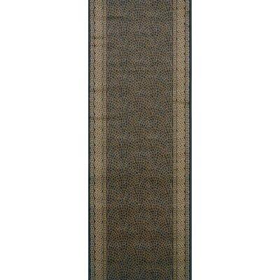 Sujangarh Black Area Rug Rug Size: Runner 22 x 15