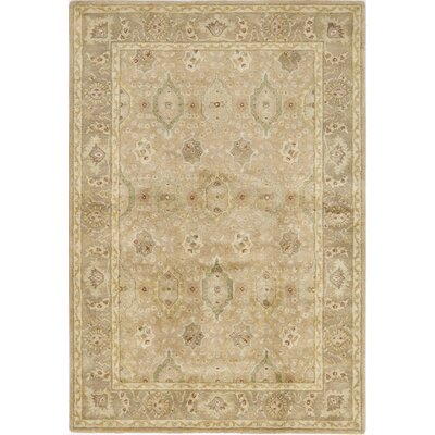Thiruvalla Hand-Tufted Taupe Area Rug Rug Size: 3 x 5
