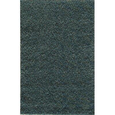 Thuraiyur Hand-Woven Blue Area Rug Rug Size: 7 x 9