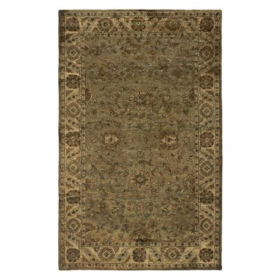 Unjha Hand-Tufted Green Area Rug Rug Size: Rectangle 5 x 8