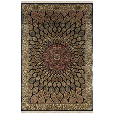 Vadnagar Hand-Knotted Black Area Rug Rug Size: Rectangle 4 x 6