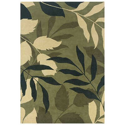 Varkala Hand-Tufted Green Area Rug Rug Size: Rectangle 3 x 5