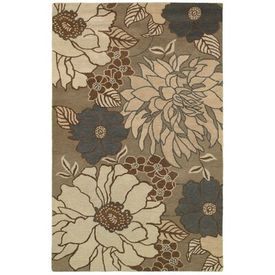 Eleusina Hand-Tufted Ivory/Gray Area Rug Rug Size: Rectangle 9' x 12'