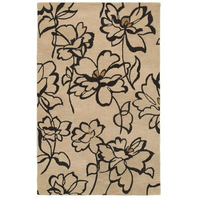 Laurium Hand-Tufted Beige/Black Area Rug Rug Size: 3' x 5'