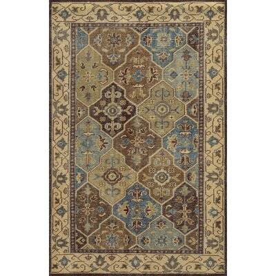 Aberdeen Hand-Knotted Brown Area Rug Rug Size: Rectangle 9 x 12