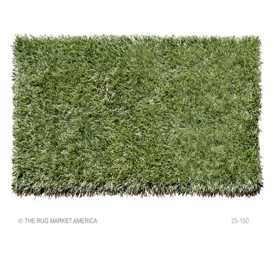 Eemshaven Hand-Woven Green Outdoor Area Rug Rug Size: 5 x 8