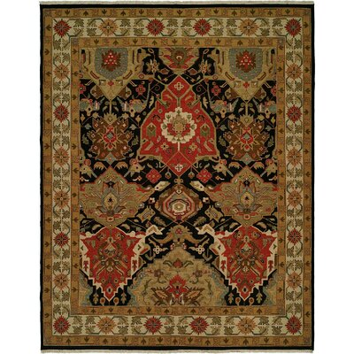 Vallarta Hand-Woven Area Rug Rug Size: Rectangle 6 x 9