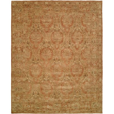 Hand-Knotted Brown Area Rug Rug Size: 4 x 6
