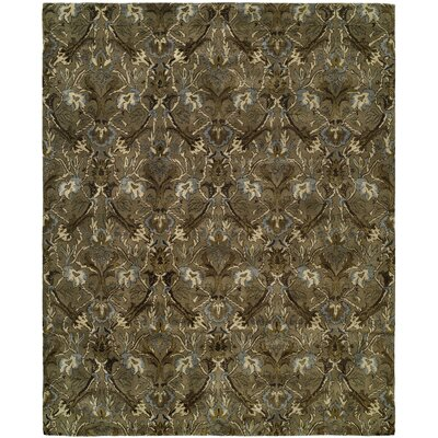 Hand-Tufted Brown Area Rug Rug Size: 8 x 10