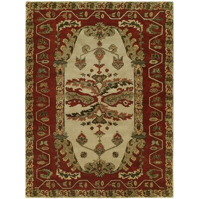 Hand-Tufted Red/Brown Area Rug Rug Size: 36 x 56