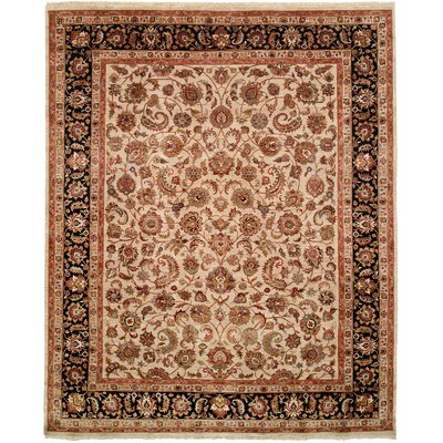 Hand-Knotted Brown/Black Area Rug Rug Size: 4 x 6