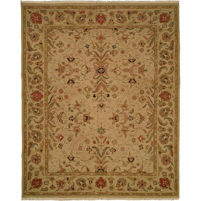 Hand-Knotted Brown Area Rug Rug Size: 4 x 8