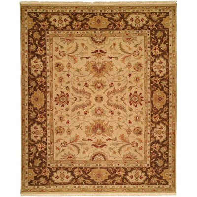 Hand-Knotted Brown Area Rug Rug Size: Rectangle 4 x 6