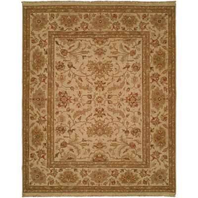 Hand-Knotted Brown/Beige Area Rug Rug Size: 4 x 6