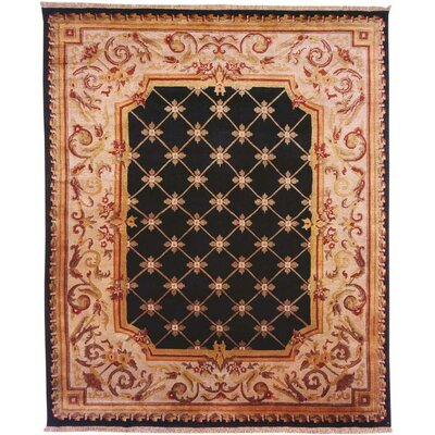 Hand-Knotted Black/Beige Area Rug Rug Size: 6 x 9