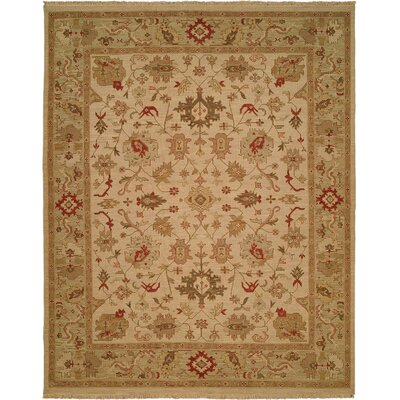 Hand-Knotted Beige/Green Area Rug Rug Size: Rectangle 4 x 6