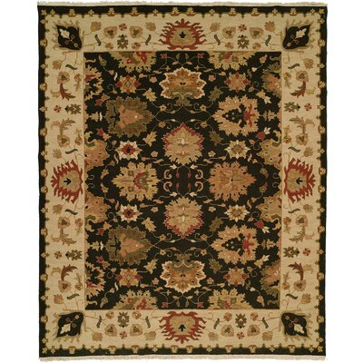 Hand-Knotted Black/Beige Area Rug Rug Size: 9 x 12